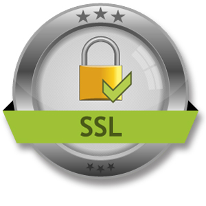 Single Domain SSL Certificate